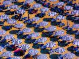 Strandtypen denen du bestimmt schon begnet bist